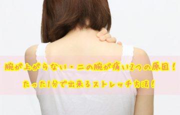 腕が上がらない 二の腕が痛い 2つの原因 ストレッチ方法