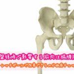 骨盤後傾 筋肉 腸腰筋 ストレッチポール