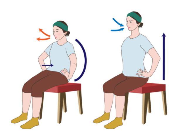 イスに座ってできる簡単腰丸めストレッチ