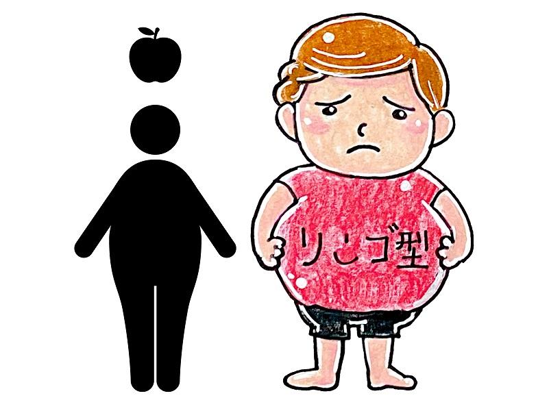 リンゴ型肥満遺伝子
